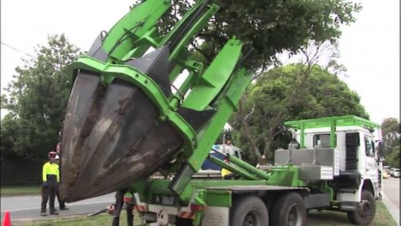 tree relocation truck